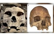Tengkorak Berusia 500 Tahun dengan Modifikasi Wajah Ditemukan di Gabon