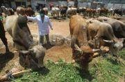 Antisipasi Penularan COVID-19, Panitia Penyembelihan Hewan Kurban Wajib Taati Prokes