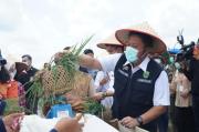 Gandeng TNI, Pemprov Sumsel Mulai Optimasi dan Intensifikasi Pertanian