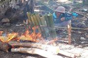 Malamang, Tradisi Sambut Idul Adha dari Tabuyung Madina
