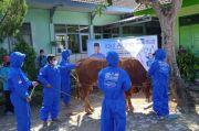 102 Hewan Kurban dari Ibas Disalurkan ke 5 Daerah di Jatim