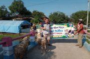 Bantu Warga di Tengah Pandemi, Legislator Perindo Jabar Sumbang 11 Sapi dan Domba