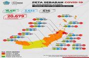 Bertambah 367 Kasus Baru, Banyak Pelaku Perjalanan di Talaud Positif COVID-19