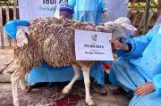 Alirkan Kebaikan Idul Adha 1442 H, Laznas BSMU Salurkan Lebih 100 Ribu Kantong Daging