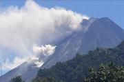 Dini Hari, Merapi Luncurkan Awan Panas Sejauh 2,5 Km dan 15 Kali Lava Pijar