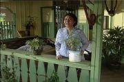 Aminah Cendrakasih Pemeran Mak Nyak Si Doel, Begini Kehidupanya Sekarang