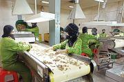 Potensi Besar Obat Herbal Indonesia Harus Digarap Serius