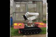 Pakar Robot IPB Ciptakan Robot Cerdas Pemanen Buah Melon, Ini Penampakannya