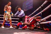 Geger, Evander Holyfield Di-KO Jawara UFC Vitor Belfort Ronde 1