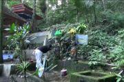 Rowo Bayu, Pertapaan Prabu Tawang Alun yang Selalu Diselimuti Kabut Misteri