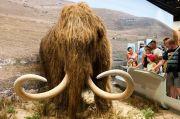 Ilmuwan Akan Bangkitkan Gajah Purba yang Hidup 4.000 Tahun Lalu