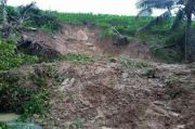 Hujan Deras, Bukit Setinggi 50 Meter di Trenggalek Ambrol