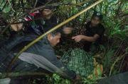 Tangis Pecah di Papua, Suster Gabreilla Meilani Dibunuh KKB Secara Brutal