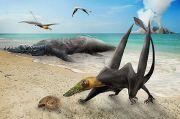Fosil Pterosaurus Baru Era Jurasic Ditemukan di Gurun Atacama Chili