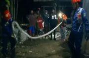 Ular Piton Sepanjang 3,5 Meter Gegerkan Warga Perumahan di Maros