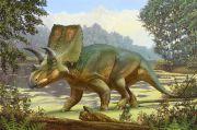 Fosil Dinosaurus Penguasa Amerika Utara Ditemukan di New Mexico