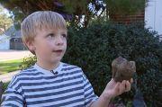 Bocah di Michigan Temukan Gigi Mastodon Berusia 11.000 Tahun