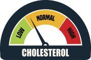 Kadar Kolesterol Normal Sesuai Usia, Ini Kisaran Angkanya