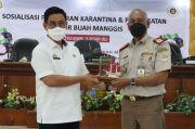 BBKP Makassar Proyeksikan Bulukumba Jadi Percontohan Ekspor Manggis