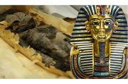Arkeolog Mesir Ungkap Rahasia Dua Mumi Bayi di Makam Raja Tutankhamun