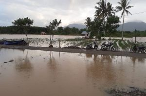 Banjir Bandang Terjang Tanah Laut, 1.349 Rumah Terendam