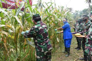 Lantamal VIII Ikut Panen Raya di Tingkat TNI AL Melalui Vicon
