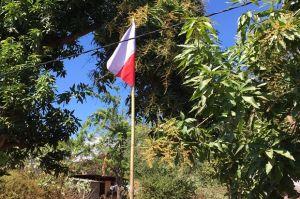 Miris, Warga Sikka Kibarkan Bendera Merah Putih Terbalik
