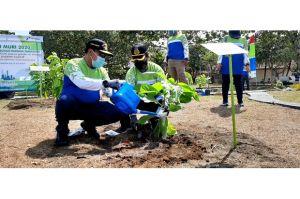Cegah Punah, Pohon Wijayakusuma Ditanam di Kawasan Konservasi