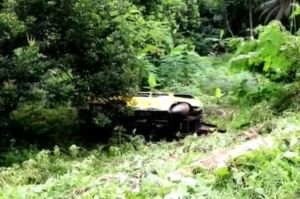 Minibus Elf Masuk Jurang 10 Meter di Ciamis, Seorang Tewas 6 Luka