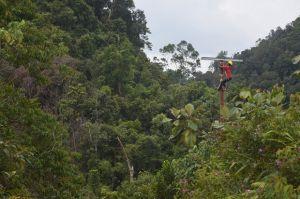 11 Desa Dialiri Listrik, Elektripikasi Riau 99,41 Hektare