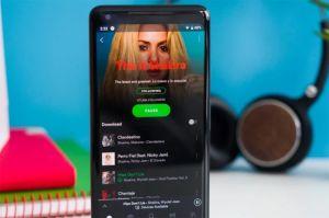 Data Bocor, Spotify Setel Ulang 350.000 Kata Sandi Akun Pengguna