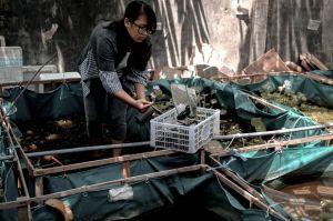 Saat Banyak yang Terpukul Pandemi COVID-19, Bisnis Wanita Cantik Ini Justru Berjaya
