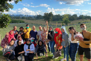 Focus Farm, Tempat Rekreasi sambil Belajar Bisnis Pertanian di Pinggiran Gunung Sinabung