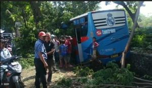 Hindari Sepeda Angin, Bus Tentrem Nyungsep ke Parit di Pasuruan