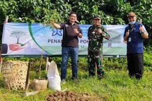 Kurangi Emisi, Menanam Pohon Trembesi Bisa Jadi Jawaban