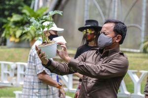 Bima Arya: Orang Bersepeda, Jogging, Tracking, Menyerbu Kota Bogor