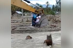 Astaga, Demi Ujian Sekolah Pelajar di Sigi Seberangi Sungai Naik Ekskavator