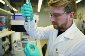 Ilmuwan Afrika Selatan Menemukan Senyawa Baru untuk Mengatasi Malaria