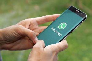 Enggak Percaya Lagi sama WhatsApp? Nih 4 Aplikasi yang Layak Menggantikannya