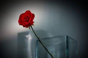 Tidak Menyulitkan Suami dengan Nafkah
