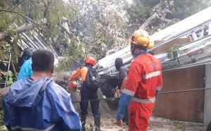 7 Rumah Tertimpa Pohon dan Atap Beterbangan Diterjang Angin Kencang di Sleman