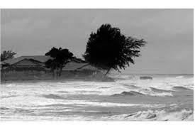 Cuaca Ekstrem, BMKG Ingatkan Potensi Multi Bencana hingga Maret 2021