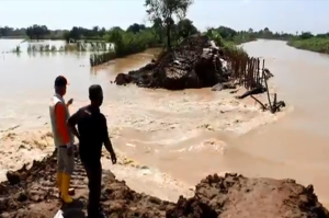Tanggul Jebol, Banjir Meluas di Indramayu dan Rendam 5 Desa