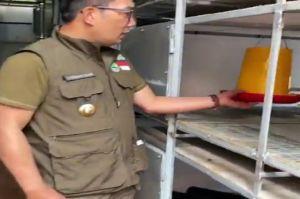 Kenalkan Program Petani Milenial 4.0 Ini Penampakan Kang Emil saat Tinjau Apartemen Ayam di Bandung