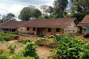 Ratusan Rumah Warga Blitar Terancam Tergusur Peternakan Sapi PT Greenfields