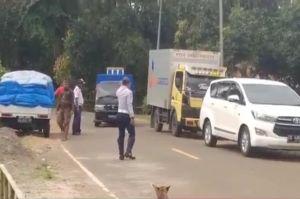 Ratusan Pemudik Dihalau Kembali ke Maumere, 1 Ditemukan Positif COVID-19