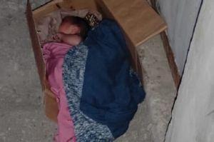 Diwadahi Kardus, Bayi Laki-laki Dibuang Hidup-hidup di Sebuah Rumah Kosong