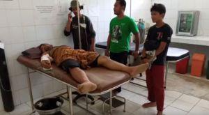 Gajah Jantan Liar Mengamuk, Asisten Mahout Terluka dan Dilarikan ke Rumah Sakit