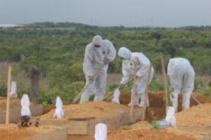 Kematian Akibat COVID-19 di Kota Batam Melonjak