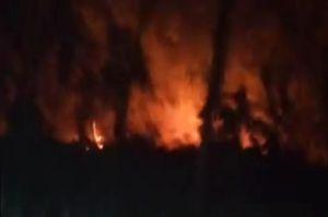 Gara-gara Bakar Sampah 2 Hektare Kebun Warga di Pangandaran Terbakar